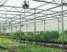 文洛型温室
