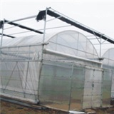 Multi span arch plastic greenhouse
