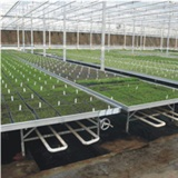 Seedbed System